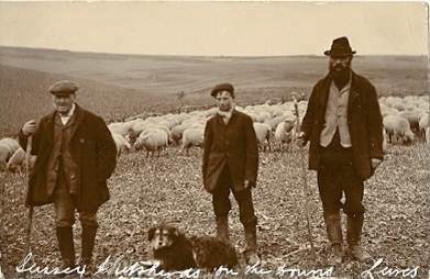 Sussex_shepherds_near_Lewes