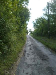 Road_up_Chapel_Hill