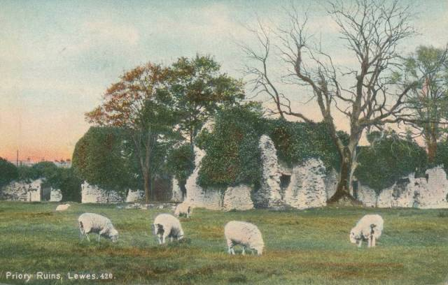Priory_Ruins_Lewes_sheep_postcard