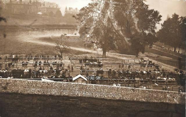 cattle-market-lewes-pells-postcard