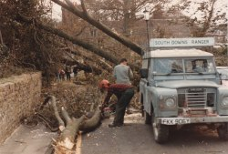 1987 tree clearance in Lewes_Millmore