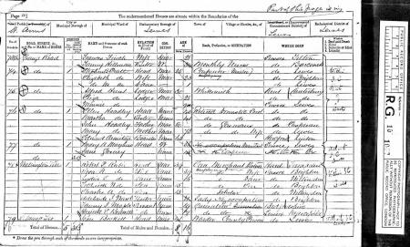 Census for St Ann's parish 1871