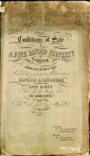 Sale of Acland Estate 1865, particulars
