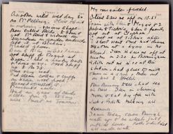 Winifred Martin's diary entry for January 1925