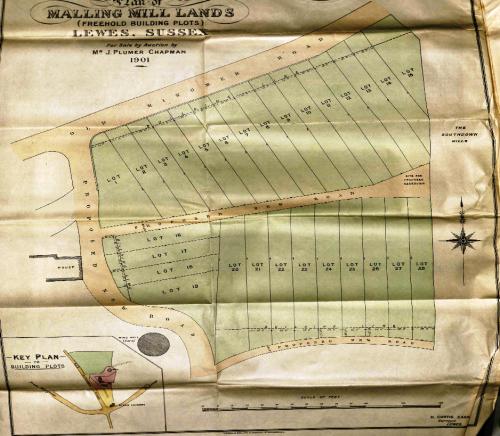 Malling Hill plots 1901